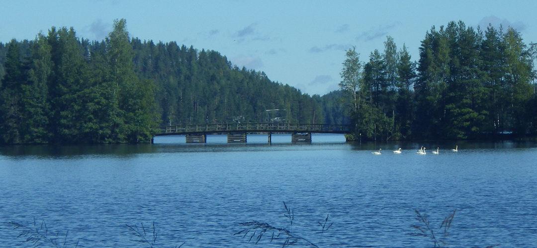Vuolenkoskella silta ja joutsenia